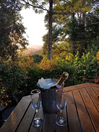 Champagne sunset in the garden