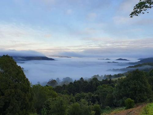 Misty morning view