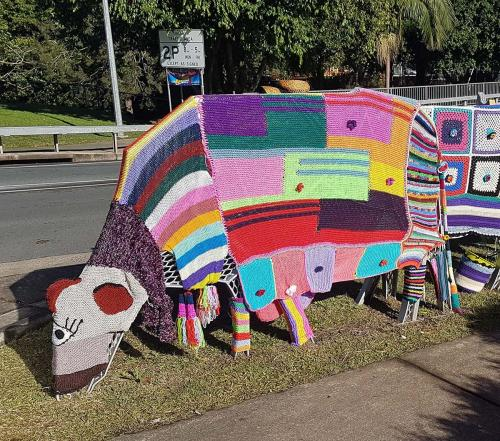 Knitfest in Maleny---usually held end June