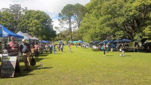Local attraction---Witta Market 3rd Saturday of month
