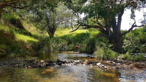 Local waterhole---Elamon creek