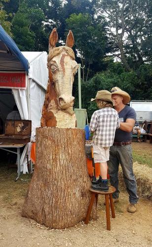 Maleny wood expo demonstration