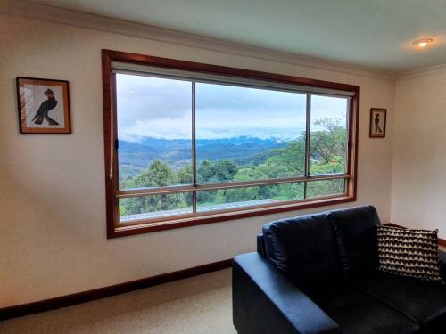 Lounge room outlook